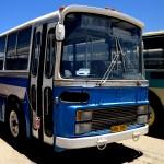 אוטובוס מדגם פיאט 320 , צילום: אפי אליאן