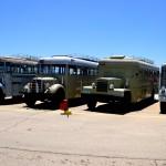 הבולטים בכניסה למוזיאון הרכב ההיסטורי - צילום: אפי אליאן