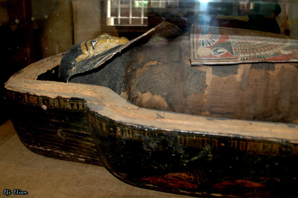 """המומיה """"אלכס"""" על משכבה במכון האפיפיורי למקרא בירושלים - צילום: אפי אליאן"""