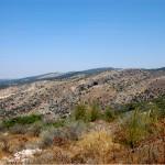 הרי בית שמש הסמוכים למערת הנטיפים - צילום: אפי אליאן