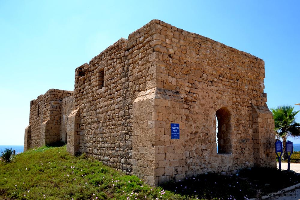 אחוזת קבר השיח עוואד שעל חוף הים באשקלון