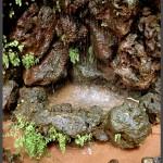 מפלי מים מצוקי אבן מלאכותיים