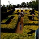 המבוך הקלאסי לילדים בגן אוטופיה