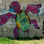 צבים ולא רק במים - ציור גרפיטי שצולם בסמוך לשפך הנחל