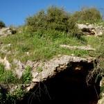 מערה בתוך גבעת הכורכר בשמורת נחל אלכסנדר