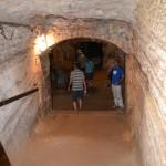 יורדים למרתפי היקב בבית הספר מקוה ישראל
