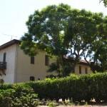 בית יעקב נטר