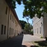 השדרה בין בית נטר לבית הכנסת במקוה ישראל