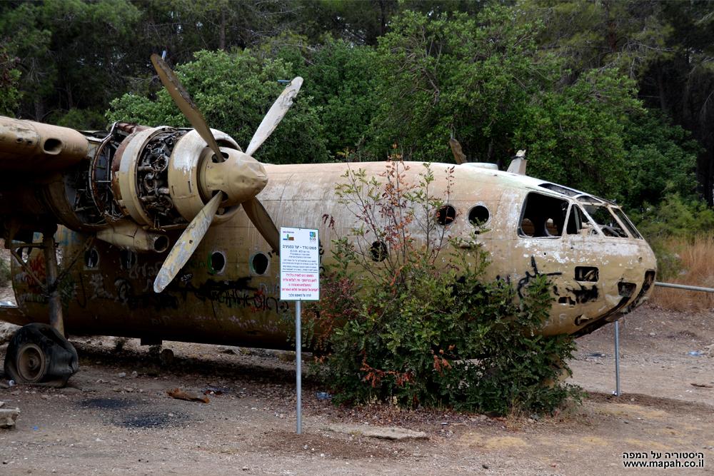 מטוס הנורד 072 בין עצי יער המגינים