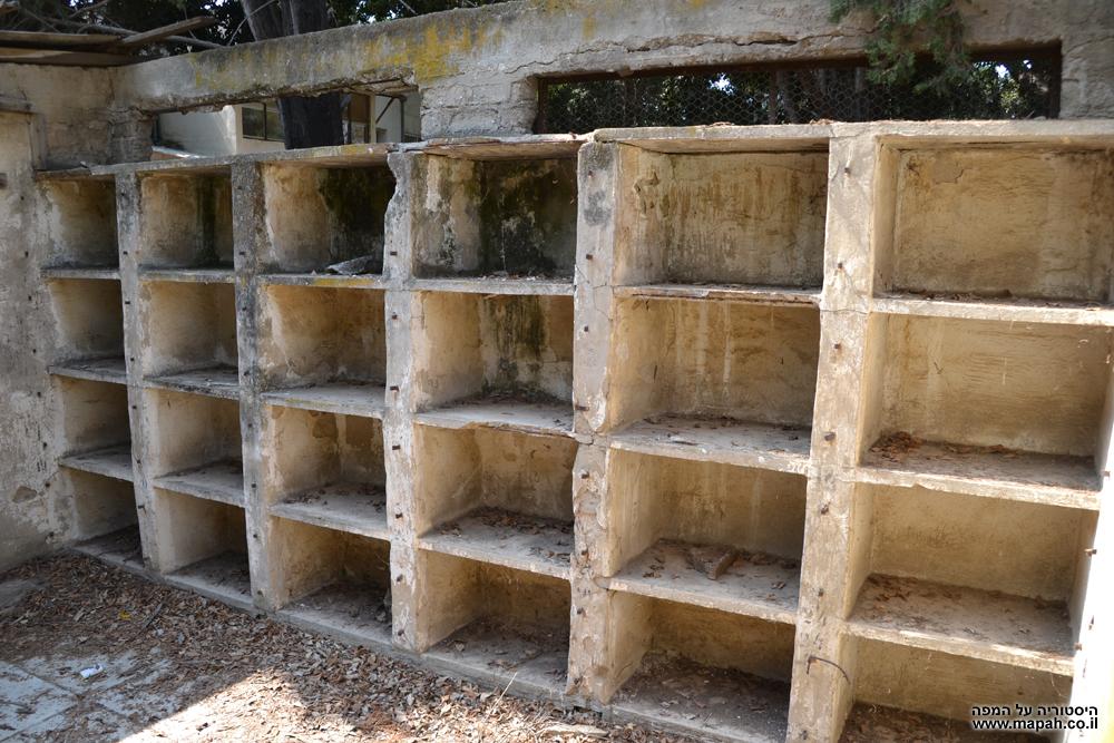 תאי שובך היונים בקיבוץ גבעת ברנר - צילום: אפי אליאן