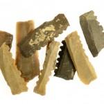 כלי הצור שנחשפו במהלך החפירה. צילום: קלרה עמית, באדיבות רשות העתיקות