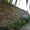 החומה המקיפה את מתחם פרדס מינקוב - צילום: אפי אליאן