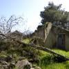 שרידי מבנה שדה התעופה הבריטי R.A.F בבארי - צילום: אפי אליאן