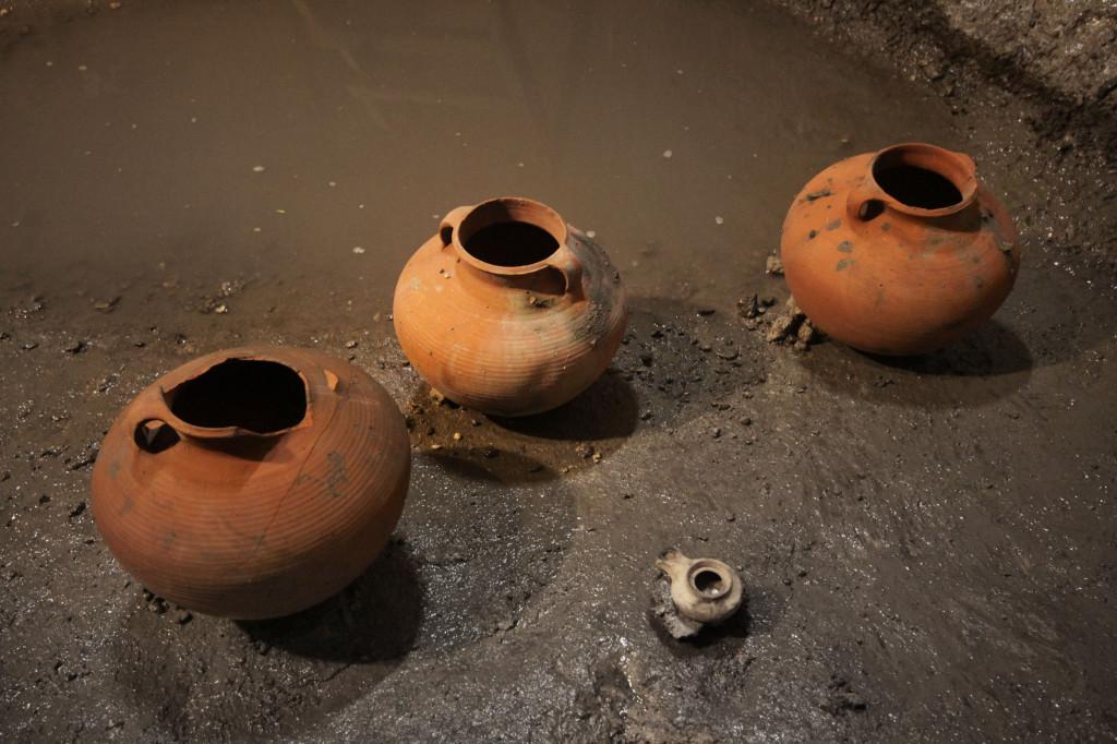 הממצאים שנחשפו  בירושלים צילום: ולדימיר נייחין