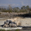 הקצה המזרחי של אמת המים מעברו השני של כביש 6 - צילום: אפי אליאן
