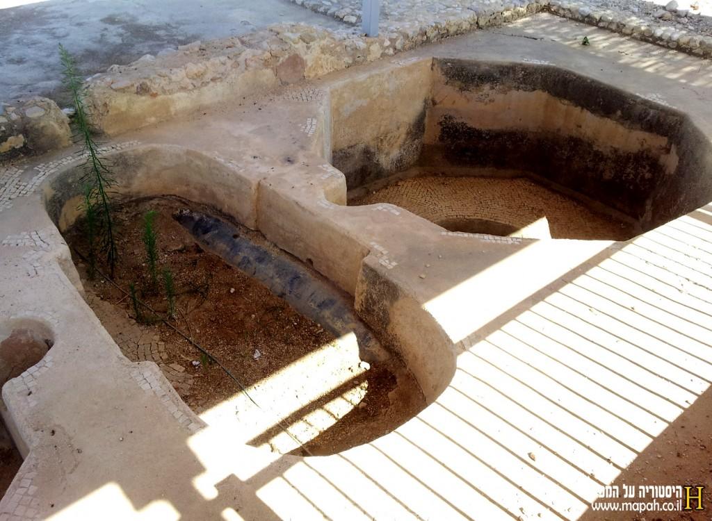 אמבטיית הניקוז ומיכל השימור ליין בגת גדעון - צילום: אפי אליאן