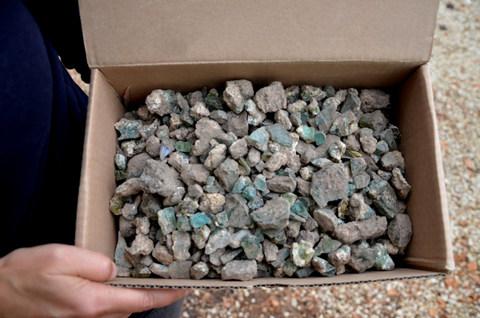 """""""שברי הצמיד נמצאו באחד מארגזי המיון"""" צילום: יולי שוורץ"""