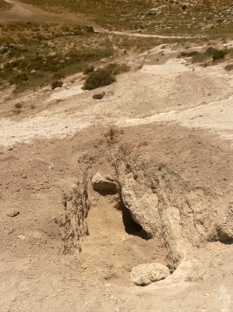 הפתח המערה באתר העתיקות ליד האוניברסיטה העברית בירושלים - צילום: היחידה למניעת שוד ברשות העתיקות
