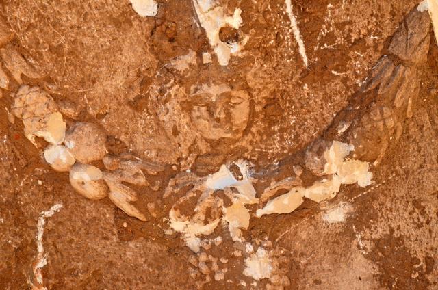 של מדוזה, שבצידי ארון הקבורה. האמינו שהיא מגינה על דמותו של הנפטר - צילום: יולי שוורץ
