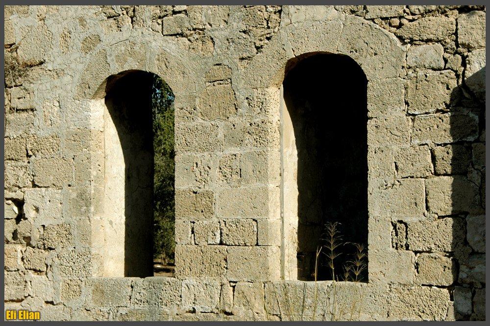 חלונות היכל התפילה מצד מערב - צילום: אפי אליאן