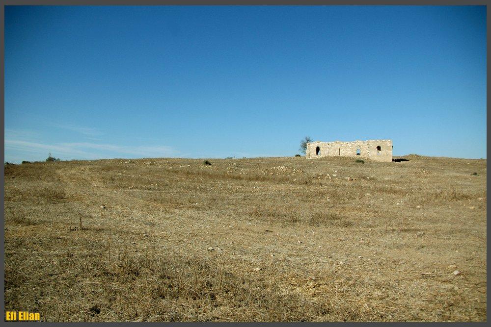 מראה כללי של השטח וחלקו הדרומי של מסגד סלמאן אל פארס - צילום: אפי אליאן