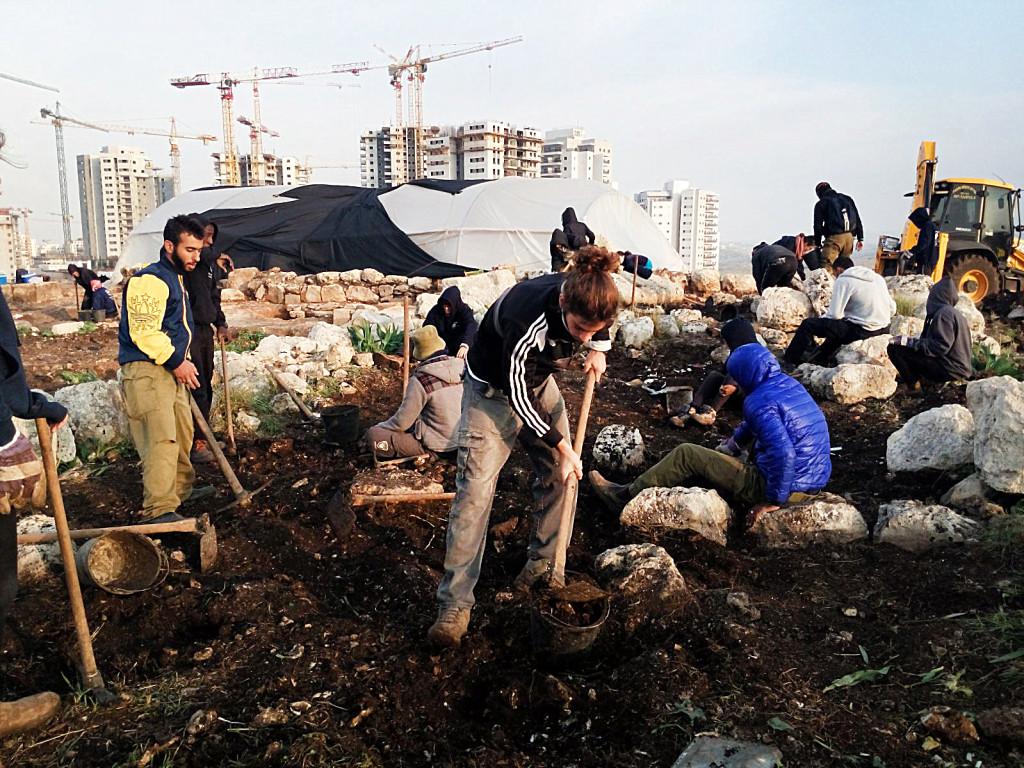 תלמידי מכינת גל להכשרת מנהיגות במהלך החפירה הארכיאולוגית. צילום: רשות העתיקות
