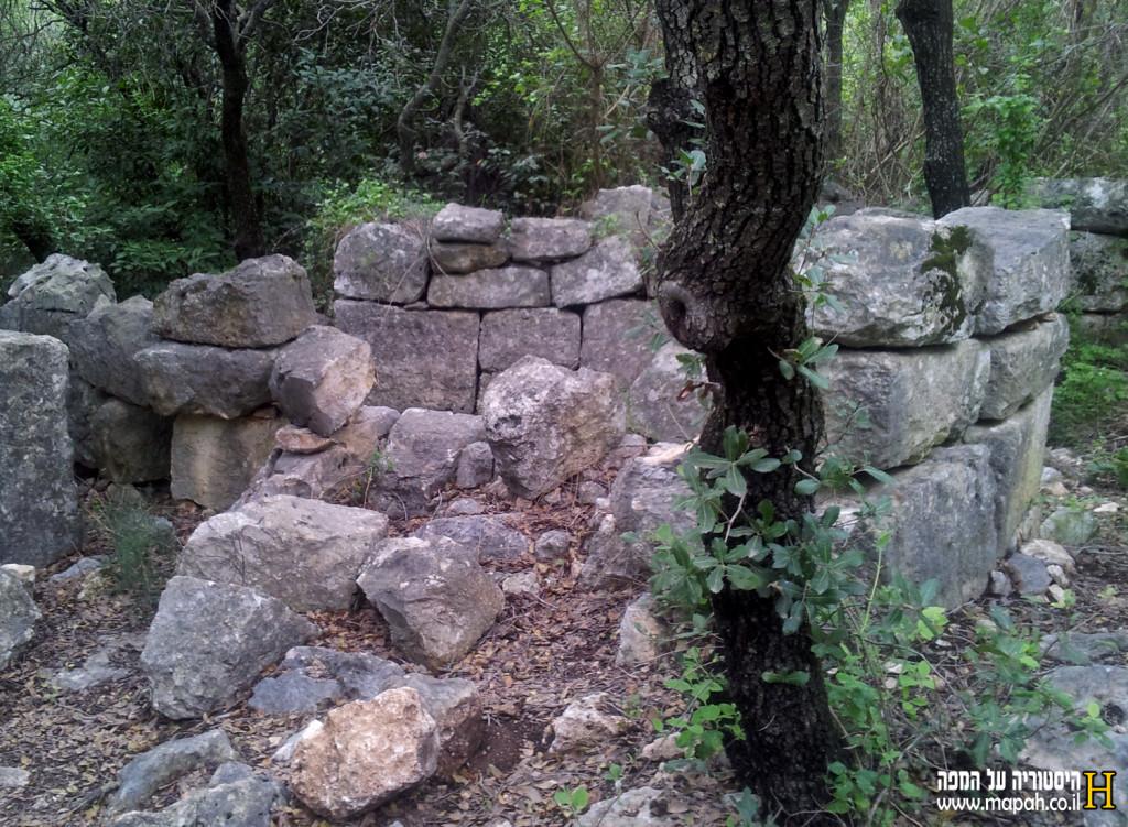 שרידי מבנה מהתקופה הרומית בחורבת דנעילה - צילום: אפי אליאן