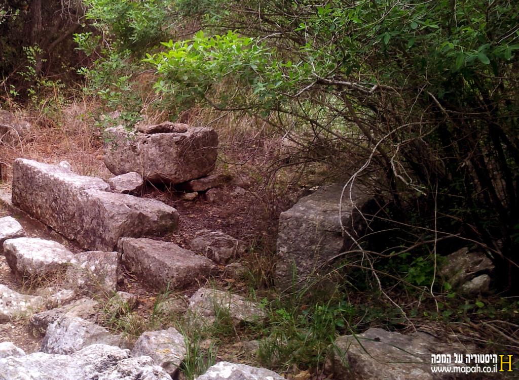 שרידים ואגנית מים בחורבת דנעילה - צילום: אפי אליאן