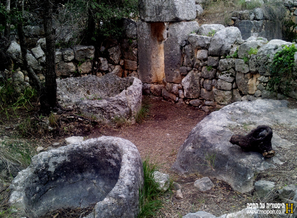 מראה כללי של בית הבד הביזנטי - צילום: אפי אליאן