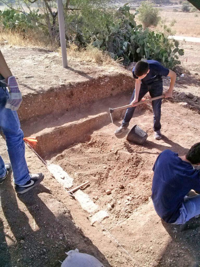 גם עבודה, גם ערכים. בני הנוער שעבדו הקיץ בחפירה הארכיאולוגית בשלומי. צילום: קרן קובלו-פארן, רשות העתיקות