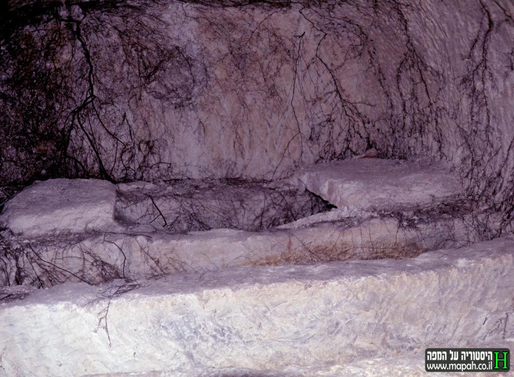 """בתוך מערת הקבורה """"מערת המעלות"""" צילום: אפי אליאן"""