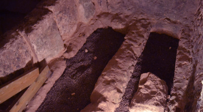 בתוך מערות בית שערים – השביל התחתון (חלק ג)