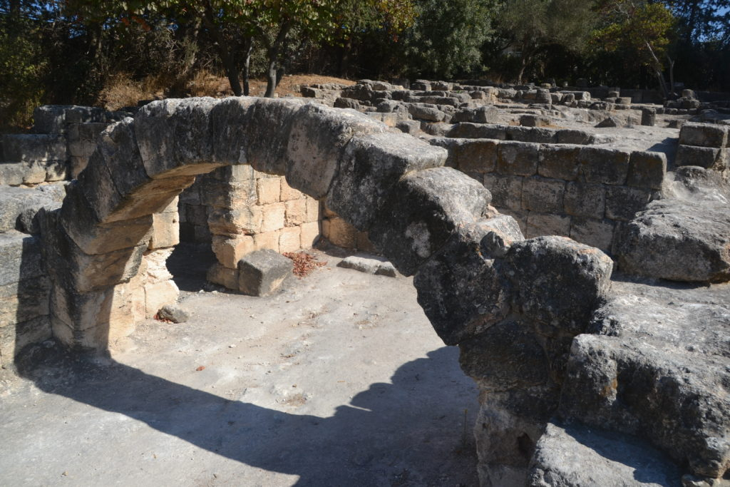 שרידי בית הכנסת העתיק בבית שערים - צילום: אפי אליאן