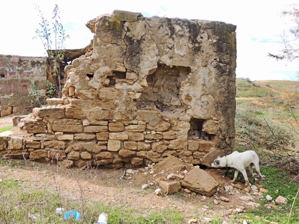 הרס באתר העתיקות באר הלמות - צילום: גיא פיטוסי
