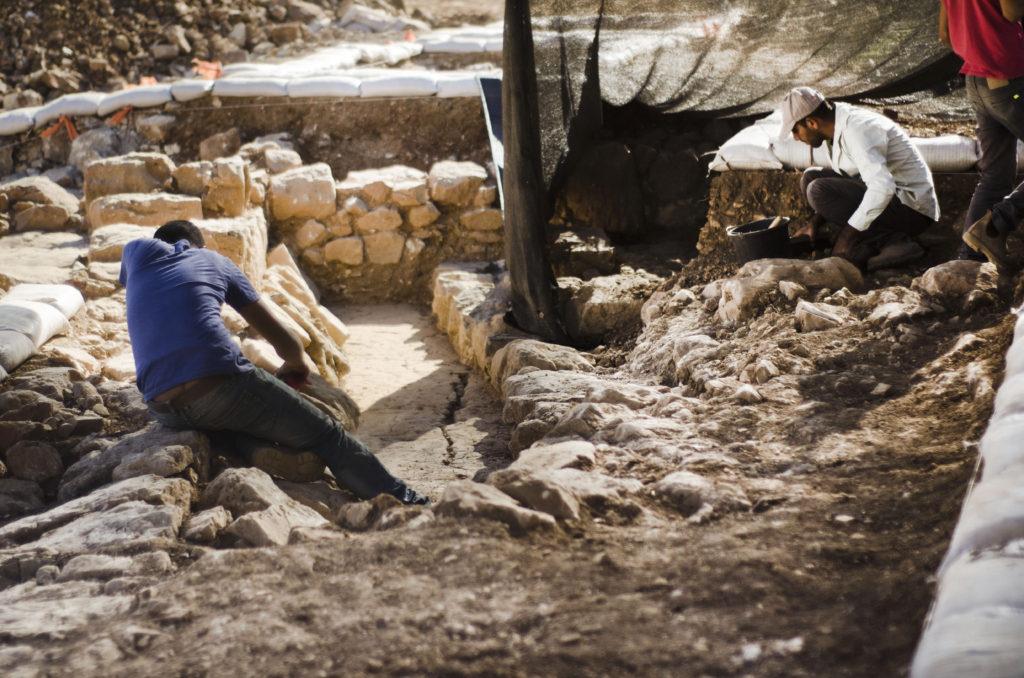 החפירה באתר. צילום: יוֹלי שוורץ