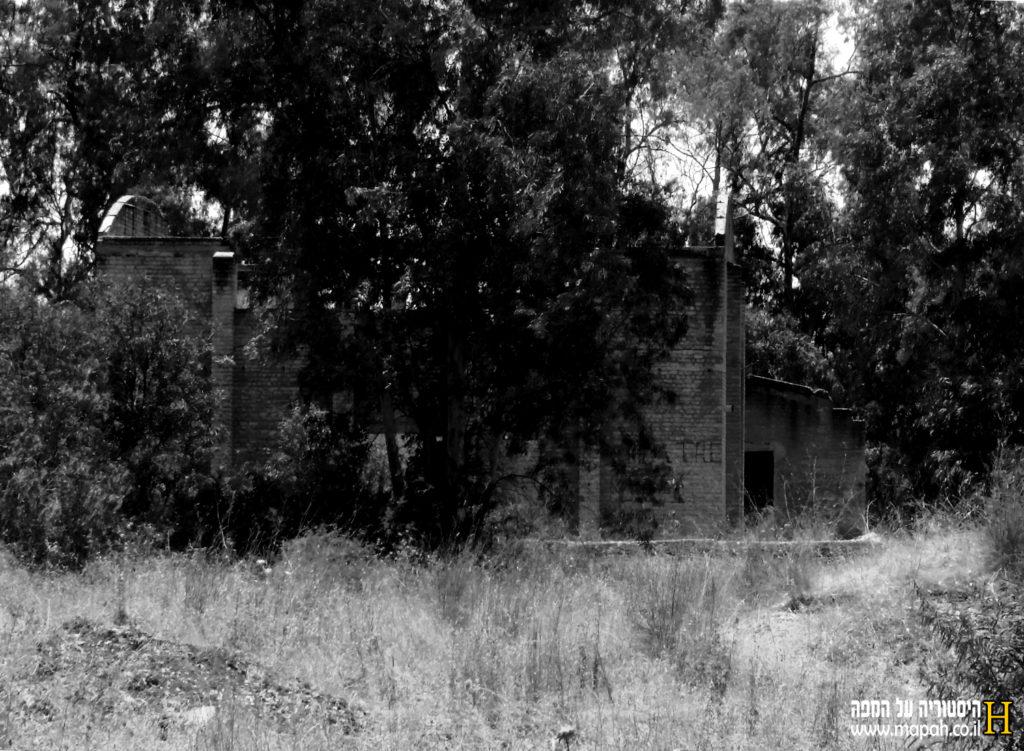 המבנה הבריטי הגדול נחבא בין עצי היער ליד בסיס נבאללה - צילום: אפי אליאן