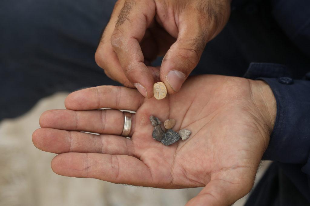 מקבץ של בולות. צילום: אליהו ינאי, עיר דוד