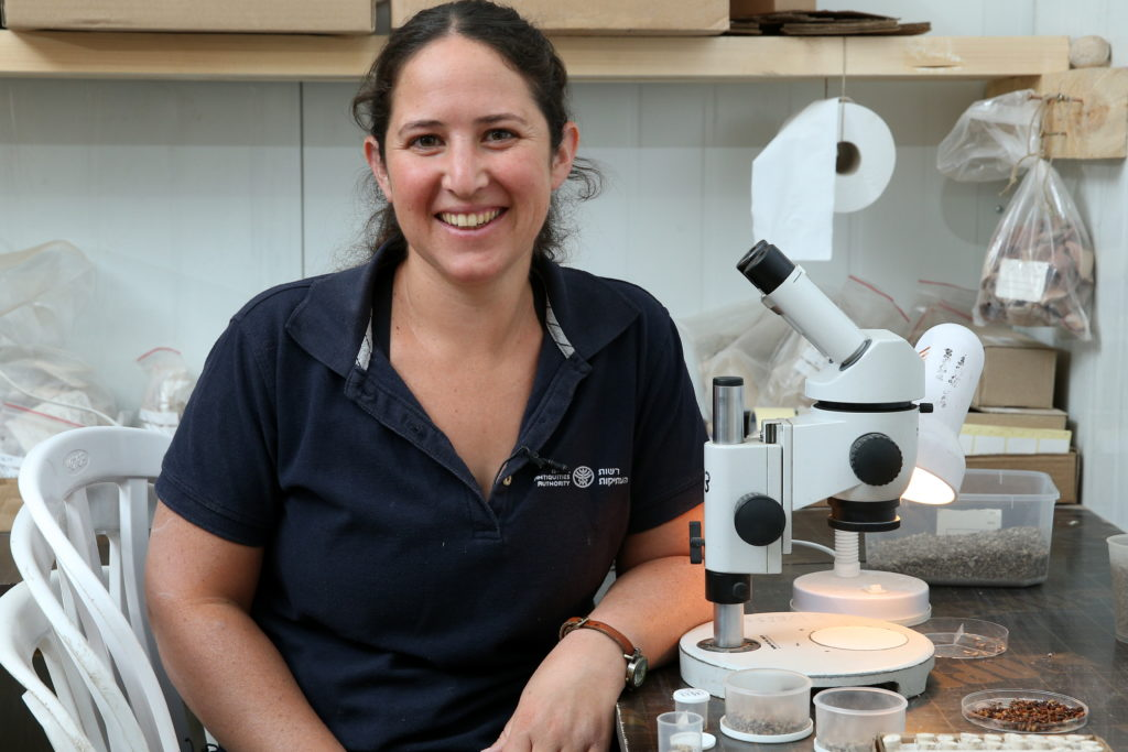 אוריה עמיחי, ארכאובוטנאית החפירה מטעם רשות העתיקות, במעבדה
