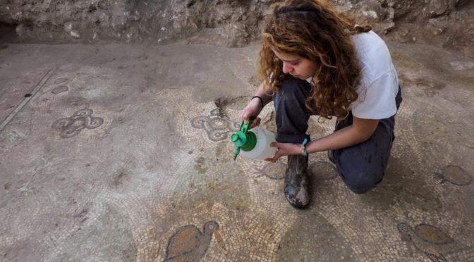 תמונות הפסיפס והחפירה, בהשתתפות תלמידי התיכון לחינוך סביבתי בשדה בוקר. צילום: אסף פרץ