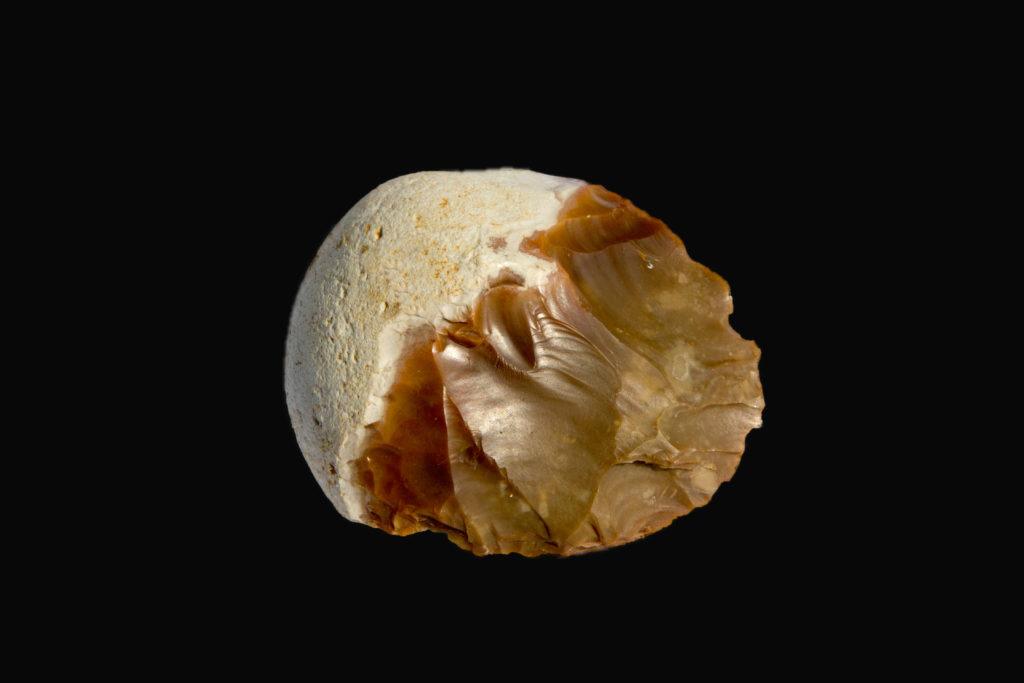 מאות אבני יד שיצר האדם הקדמון נחשפו בחפירה. צילום שמואל מגל